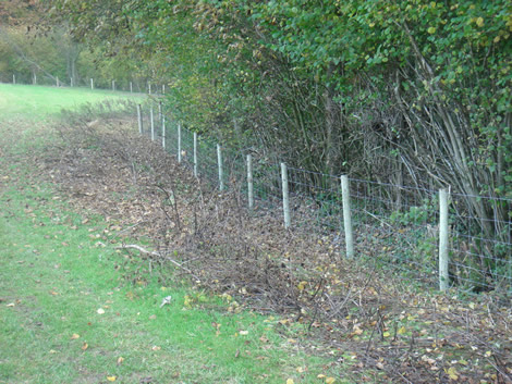 Farm fencing in Hampshire