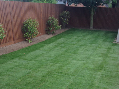 turf laid in Basingstoke
